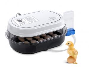 incubatrice per uova-galline-oche-pulcini