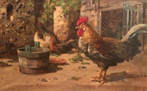 pollaio-legno-ferro-plastica