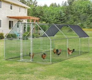 recinto per galline